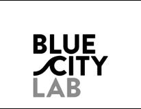 BlueCity 010 Lab logo