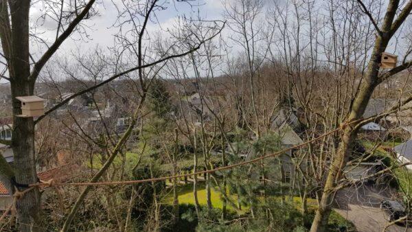 Eekhoornbruggen en eekhoornkasten in Nijkerk