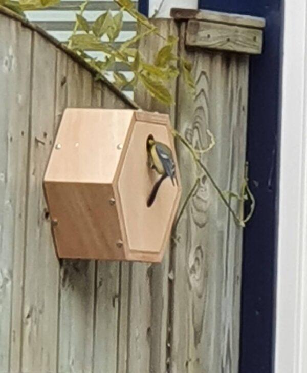 Vogelhuisje aan schutting poly design